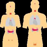 Hashimoto, a więc niedoczynność tarczycy a ciąża