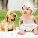 Jak przygotować swojego zwierzaka na dziecko w domu
